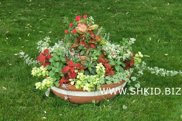 Яхт-клуб вазон с цветами