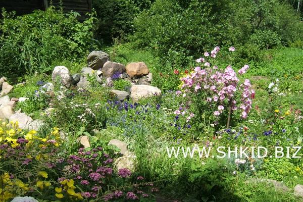 Ирландский сад 34