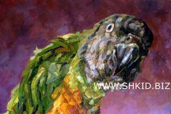 Попугай 2