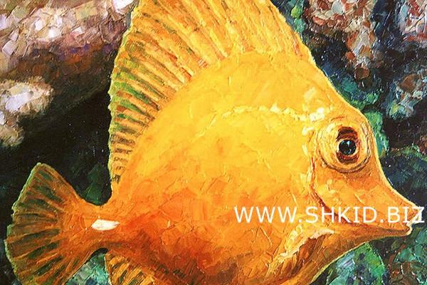 Рыба 8